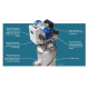 Description du filtre automatique à sédiments AG1Filtre AG300 Hectron